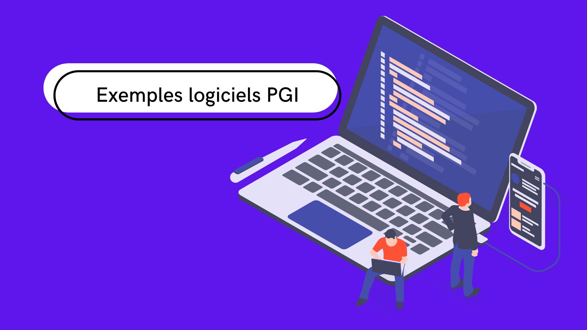 5 exemples de logiciel PGI